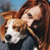 Почему стоит завести собаку?
