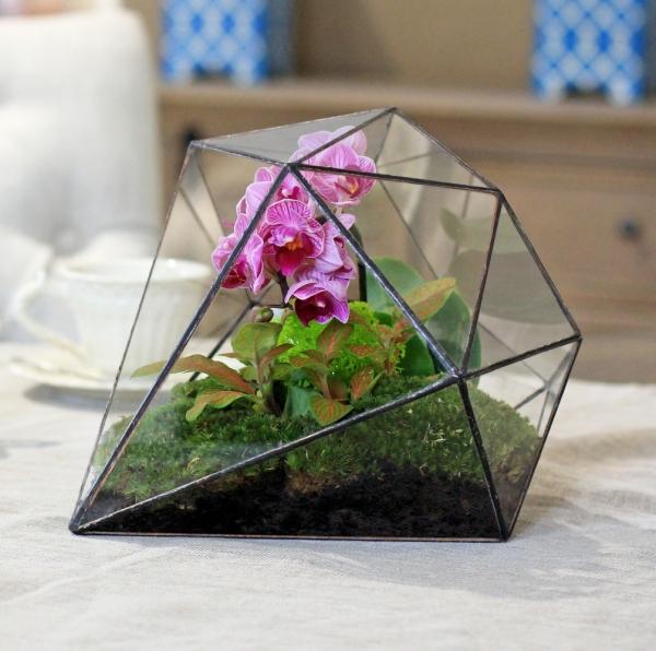 Как сделать флорариум для орхидей своими руками 66
